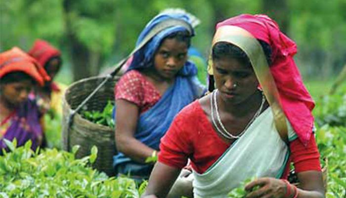 L'esclavage un fléau encore existant en Inde