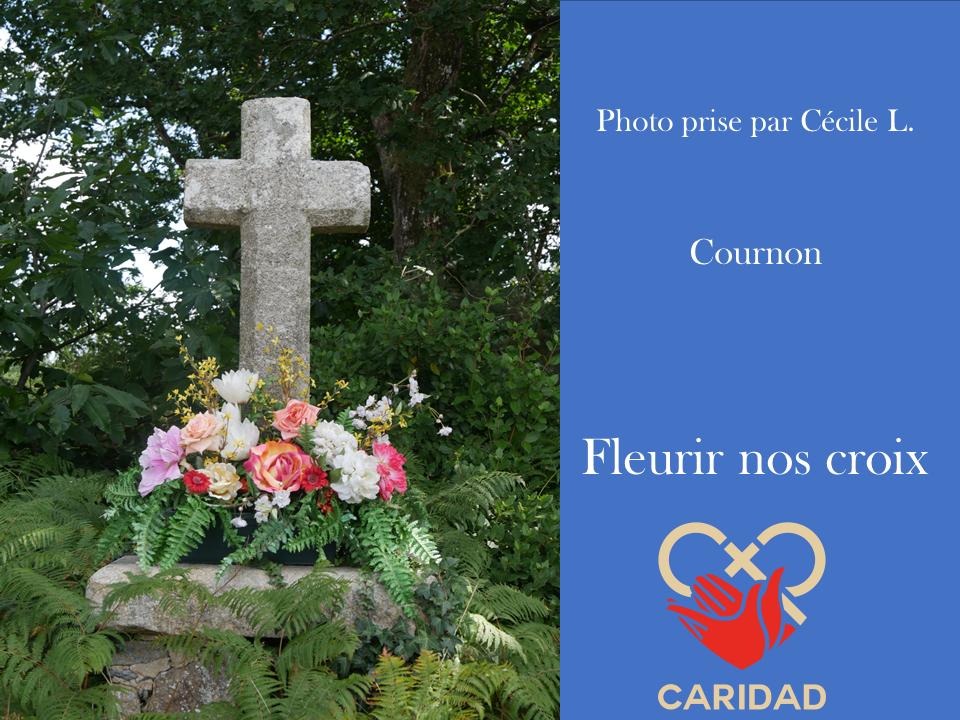 Photo de calvaire fleuri Cournon